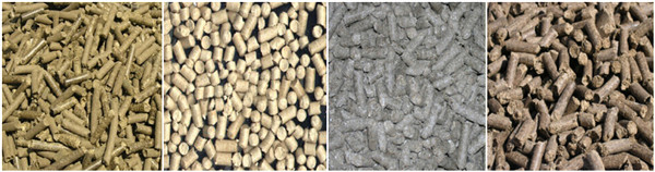 For a green future an overview of biomass energy in china