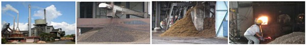 EFB palm fiber biomass application
