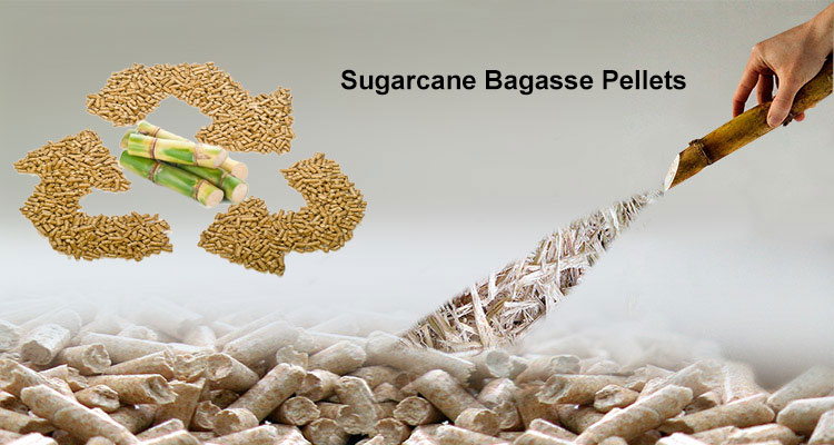 make-pellets-from-sugarcane-bagasse