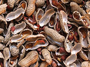 peanuts shell pellet production