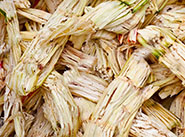 sugarcane pellet production