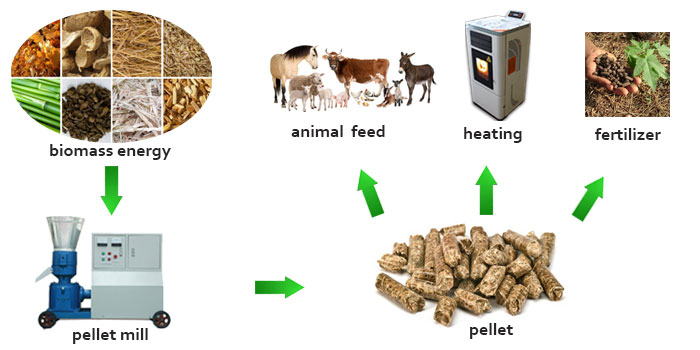 Wood Pellet Mill: Turn Biomass Material into Energy