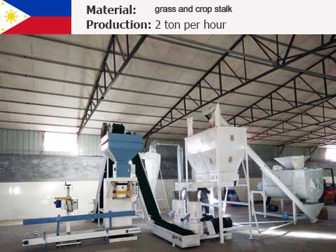 2 t/h Feed Pellet Mill Plant In Philippines